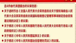 海南代表团以代表团名义向大会提交议案4件