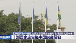世界看两会丨非盟副主席:中国是非洲的朋友 更是榜样