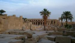 埃及单日新增病例超千例 累计确诊病例超两万例