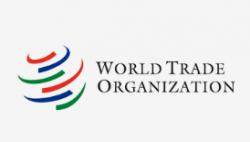 韩国拟再就日本出口管制诉诸世贸组织