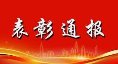 海南省人力资源和社会保障厅 海南省卫生健康委员会 关于表彰海南省抗击新冠肺炎疫情先进集体和先进个人的决定