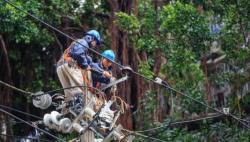 國家能源局約談國家電網:全力防止事故多發頻發
