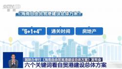 六个关键词看《海南自由贸易港建设总体方案》
