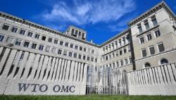 世贸组织新总干事提名结束 8人参与角逐