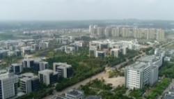 园区新动力 海南生态软件园:政策红利+营商环境 园区经济快速发展