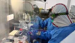 日本研究发现变异新冠病毒 新增确诊多为变异新冠病毒感染者
