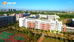 海南:创新思路引进优质教育资源 打造新时代教育全面深化改革开放新标杆
