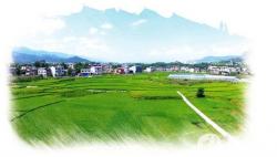 以深化制度改革推动乡村与小城镇协同发展