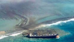 """毛里求斯称已做""""最坏打算""""应对搁浅货船漏油事件"""