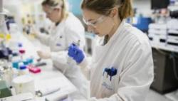多国将联手生产新冠疫苗