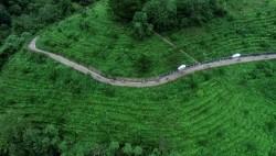 绿色跨越山水间