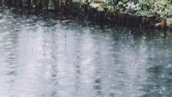 @海南人 出门记得带伞!未来三天海南多地有雨