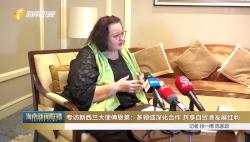 专访新西兰大使傅恩莱:多领域深化合作 共享自贸港发展红利