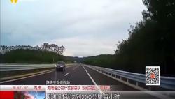 一轿车万洋高速上逆行 对向车辆记录惊魂瞬间