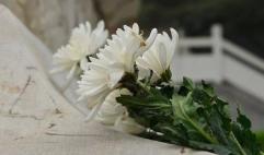 中老双方共同祭扫中国援老挝烈士陵园