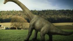 气候变化曾两次毁灭恐龙,科学家找到了证据!
