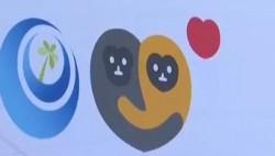 """消博会进行时 首届海南国际设计周启动 吉祥物""""元宵""""彰显环保理念"""