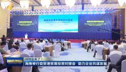 消博会来了! 海南举行自贸港贸易投资对接会 助力企业共谋发展