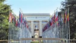 联合国强烈谴责5名卫生工作者在阿富汗被杀事件