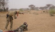 尼日尔安全部队遇袭致19人死亡