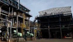 海南多个千亿级产业集群聚优成势 助推自贸港高质量发展