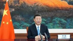 综合消息:在新的历史起点上,推动构建更加紧密的上合组织命运共同体——多国专家学者高度评价习近平主席在上海合作组织成员国元首理事会第二十一次会议上的重要讲话