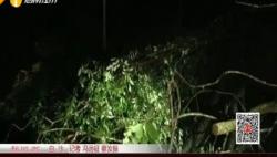 台风中的海南担当:国道雨夜接连四处塌方 公路人彻夜无眠保疏通