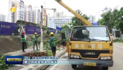 """台风""""圆规""""过境:海南各地积极开展灾后恢复 最大限度减少损失"""