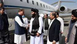 巴基斯坦外交部长库雷希访问阿富汗
