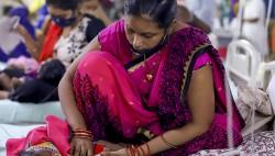 印度登革热疫情持续肆虐 一地两周内超900人感染