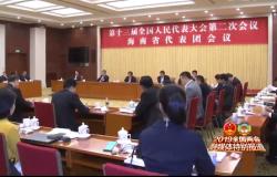 海南代表团继续审议两高工作报告 刘赐贵 沈晓明 张业遂出席