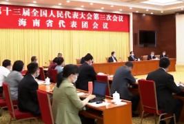 """刘赐贵在审议政府工作报告时提出:全力应对""""三个大考""""做好""""三张答卷"""" 在不平凡一年争取不平凡作为"""