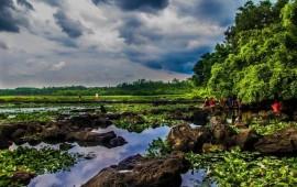 迈向国际旅游消费中心 海南旅游消费格局扩大