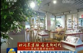上海浦东:努力当好改革开放排头兵