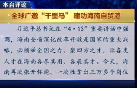 """本臺評論:全球廣邀""""千里馬"""" 建功海南自貿港"""