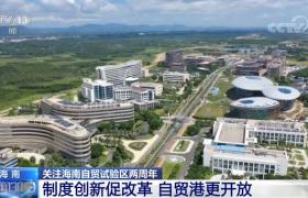 海南自贸试验区两周年:制度创新促改革 自贸港更开放