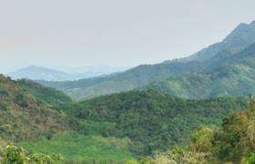 海南筑牢绿色生态屏障 精心建设热带雨林国家公园