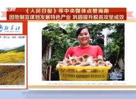 《人民日报》等中央媒体点赞海南:因地制宜谋划发展特色产业 巩固提升脱贫攻坚成效