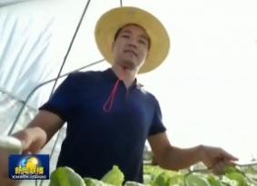 央视《新闻联播》点赞海南乡村振兴工作