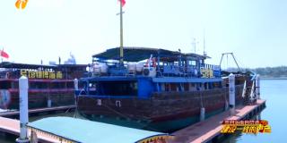来自海南自贸港建设一线的声音 海南出台指导意见推动休闲渔业试点 助力渔业转型升级渔民转产转业
