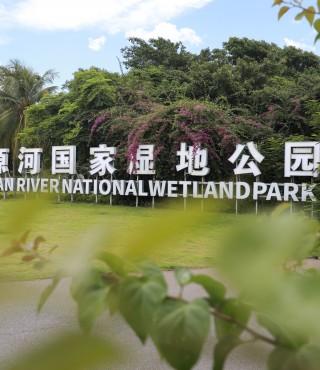 在月牙湾入海口,与寂寞的树为伴,五源河湿地公园  Wuyuan River National Wetland Park