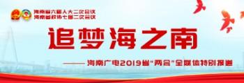 2019海南省两会