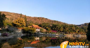 海南三亚:节后旅游热度不减  春意盎然迎客来