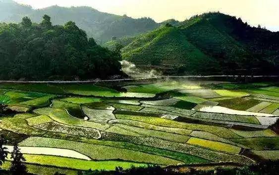 习近平:说一千、道一万,增加农民收入是关键
