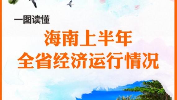 一图读懂2019海南省上半年经济运行情况
