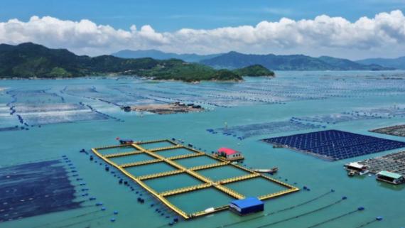 福建霞浦:清海扩航在行动