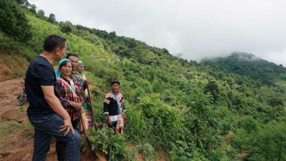 20余載植樹造林 萬畝荒山成森林