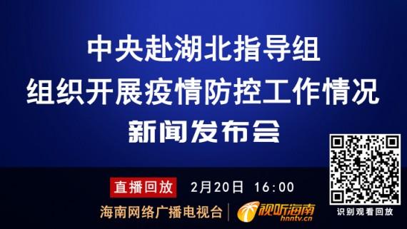 回看:中央赴湖北指导组组织开展疫情防控工作情况新闻发布会