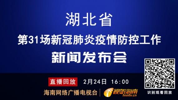 回看:湖北省第31场新冠肺炎疫情防控工作新闻发布会