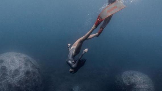 """在水下摄影师的镜头中 三亚海底世界""""惊艳""""曝光"""